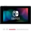 Nintendo Switchと合わせて購入したアクセサリ・周辺機器